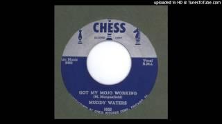 Muddy Waters Got My Mojo Working 1956