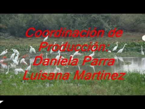 Conoce a el municipio Camaguán en el estado Guárico