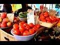 Рынок в конце лета  Продукты и цены  Черкассы