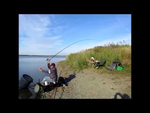 рыбалка фидером на березине