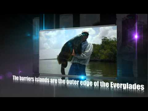 Everglades Fishing Guide 877-795-3437 Capt Mike Merrit | Chokoloskee Fishing Charters