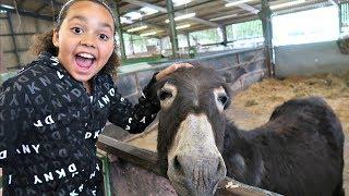 Kids Family Trip To The Farm Feeding Animals - Playground Fun - Kids Educational video
