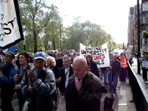 Watch Thousands Speak Up for Animals in London!