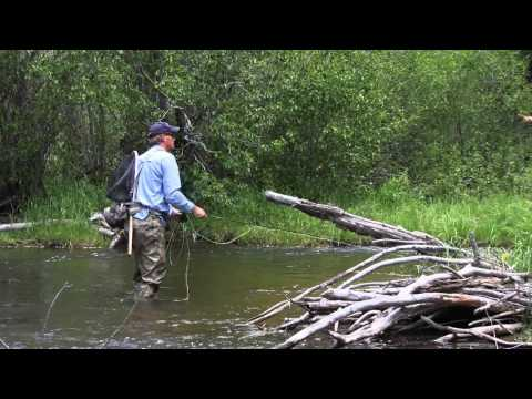 Fly Fishing Colorado Trout Creek June 2009 Part 1