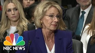 Betsy DeVos Discusses Role on Board of Mother
