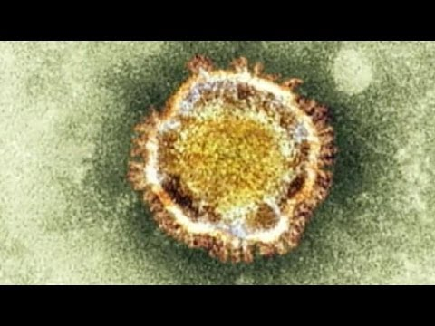 Evidence grows for human to human transmission of deadly new coronavirus