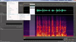 Adobe Audition -- Removing generic noises that run through entire clips