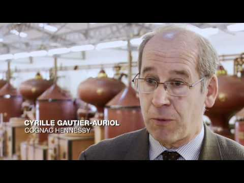 Distillation -- The Birth of Cognac
