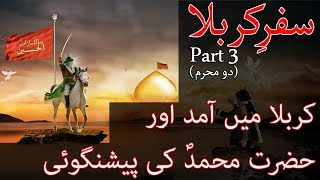 Safar e Karbala In Urdu Part 3 - 2 Muharram by Alama Arshad Mustafvi