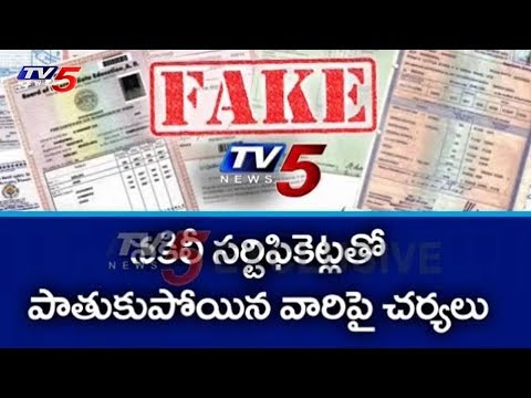 AP Govt Shock to Fake Certificates Holders | Amaravati | TV5 News