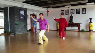 Chen Style Taijiquan: from Master to Disciple. Chen Zhenglei & Giuseppe Paterniti Lupo (Chen Delang)