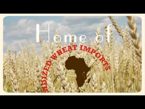 Why is wheat a strategic crop for Africa?