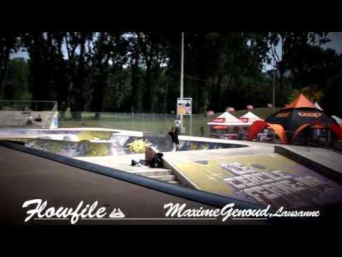 Maxime Genoud   Remz FlowFile