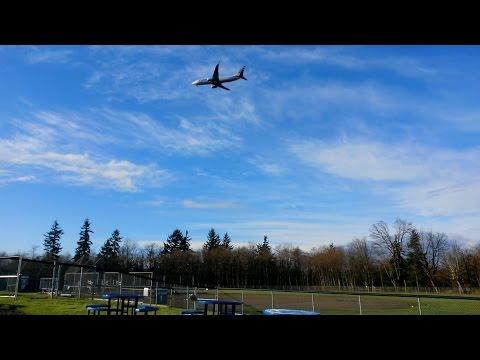 American Airlines Boeing 737-823 Airplane Preparing To Land
