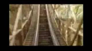 M. Ward - Rollercoaster