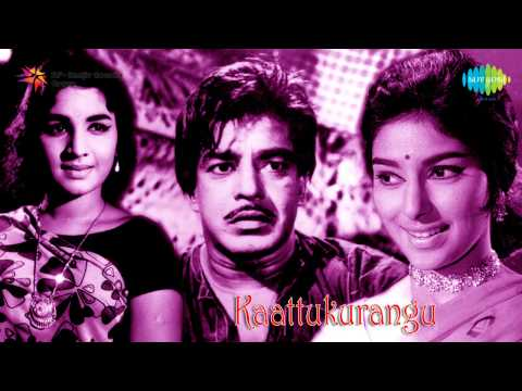 Kattu Kurangu | Karthika Rathriyile Song video