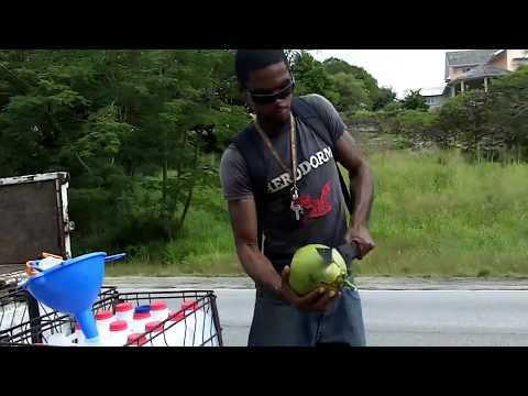 Buying coconuts in Barbados
