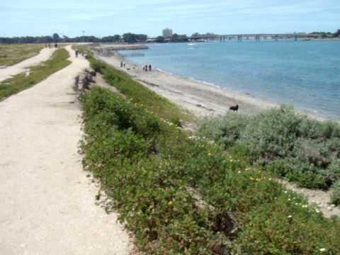 Fiesta Island Dog Beach