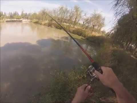 рыболовные снасти в шанхае