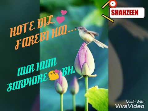 Best lyrics of DHOKHA DHADI FEMALE..