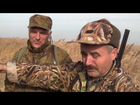 охотничьи истории видео канала охотник и рыболов