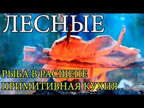 Дикая кухня - ЖАРЕНАЯ ЩУКА НА ОГНЕ В РАСЩЕПЕ   Cooking Fish Bushcraft Style