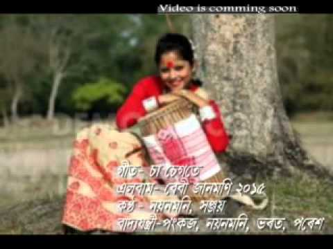 Baby Janmoni 2015-bihu- Sa Segote Mp3 video
