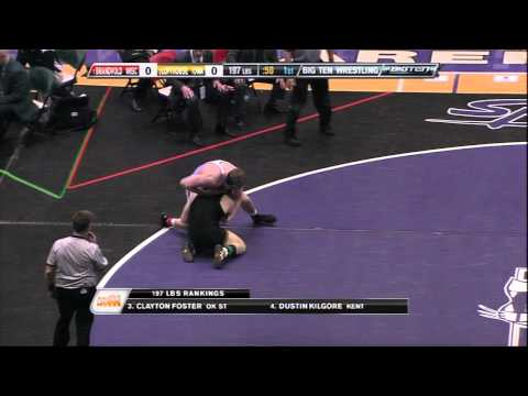 Trevor Brandvold vs Luke Lofthouse (197) - 2011 Big Ten Wrestling Championship