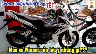Giá Xe Winner Mới Nhất Dịp TẾT ▶️ Mua xe Winner Cần Lưu Ý Những Gì??? 🔴 TOP 5 ĐAM MÊ