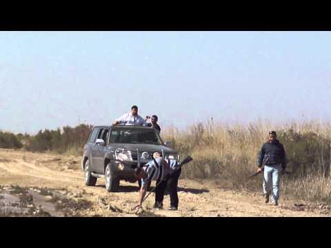 الصيد في العراق Music Videos