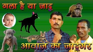 Best Animal Voice Mimicry Artist ||  Animal Sound Mimicry by Comedy dost
