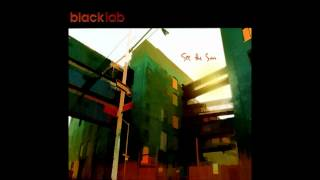 Watch Black Lab Ecstasy video