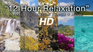 SIGNATURE Nature Relaxation™ 4K/HD Ambient Films + Instrumental Music for Study, Stress Relief, & Better Mood - Playlist