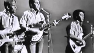 Watch Beach Boys Johnny B. Goode video