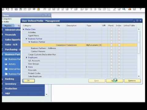 SAP Business One Customization Presentation Adding Field