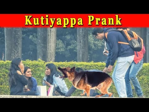 Dog Bark Prank On Girls || Funny Reaction Of Girls || Pranks In India 2018 || Funday Pranks