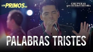 Video Palabras Tristes Los Primos MX