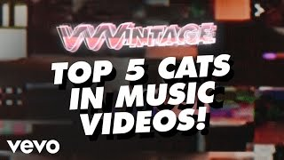 Beyonce Video - VVVintage - Cats In Music Videos! - (ft. Beyoncé, The Pussycat Dolls, Outkast, The Cure)
