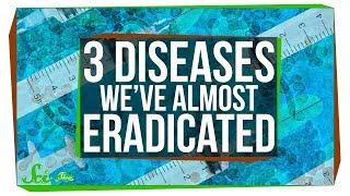 Three Creative Ways to Eradicate Diseases