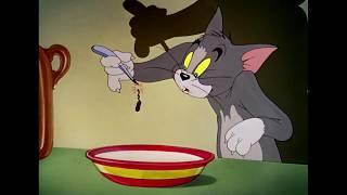Tom & Jerry توم وجيري حلقة توم  الساحر حلقة مشوقة رائعة رسوم متحركة كارتون