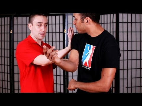 How to Do Pou Paai Jeung aka Double Palm | Wing Chun