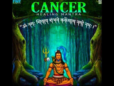 Cancer Curing chant mantra Narayaneeyam Dasakam 8  Sloka 13