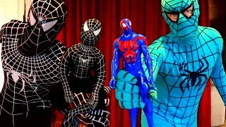 Blue Spiderman Vs Venom Action Figure Fight! Real Life Superhero Battle!