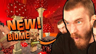 I Found The New Biome in Minecraft! (Nether Update)