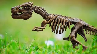 Bisherige Dinosaurier-Forschung komplett falsch? - Clixoom Science & Fiction