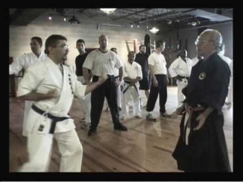 Goju Ryu Katas Self Defense Techniques Bunkai & Kobudo.wmv Image 1