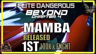 Elite: Dangerous The Mamba 1st Look and Test Flight