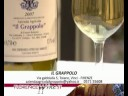 Il Grappolo - Florence Wine (English) 33