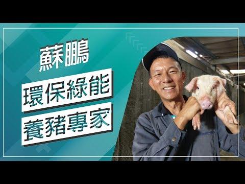 台灣-草地狀元-20180611 2/2- 環保綠能養豬專家