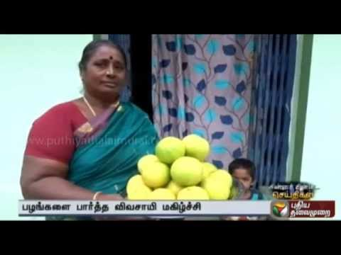 Chinna Chinna Seithigal (11/05/2015)